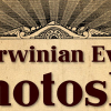The Darwinian Evolution of Photoshop Thumbnail Picture