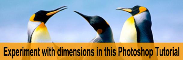 ps-dimensions